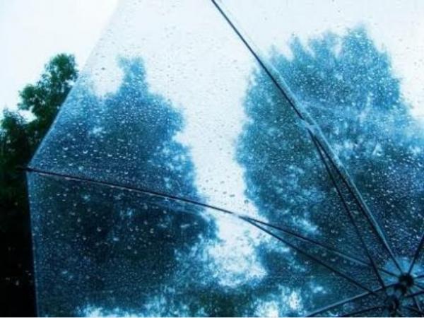 おはようございますゆずきです昨日からずっと雨が続いてますね…&#...写真