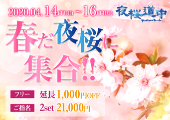 春だ夜桜に集合!!イベント画像