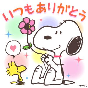 こんばんぱ+