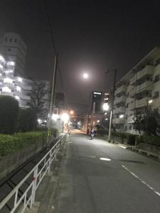 綺麗な月ですね
