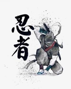 露出狂の変態忍者 (¯―¯٥)