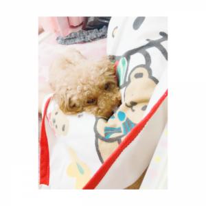 お休みDay★